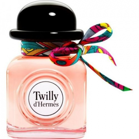 Hermes twilly 485de
