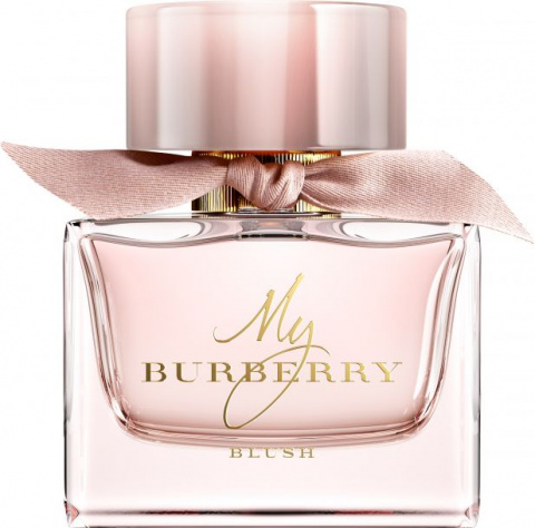 burberry blush e053b