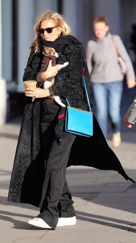 kate moss post thanksgiving dog celebrity street style story 31703